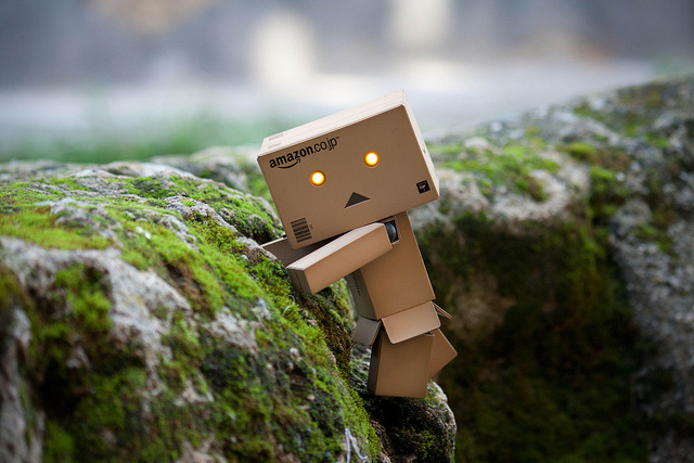 Danbo on the cliffside